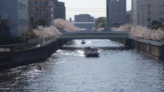 目黒川73