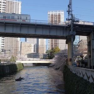 目黒川48