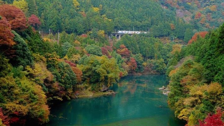 【最高の雰囲気で!】奥多摩の白丸湖で楽しむ紅葉カヌー!