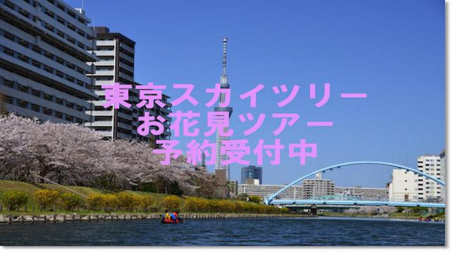 【お花見】さくらを見ながら東京スカイツリーカヌー体験ツアー