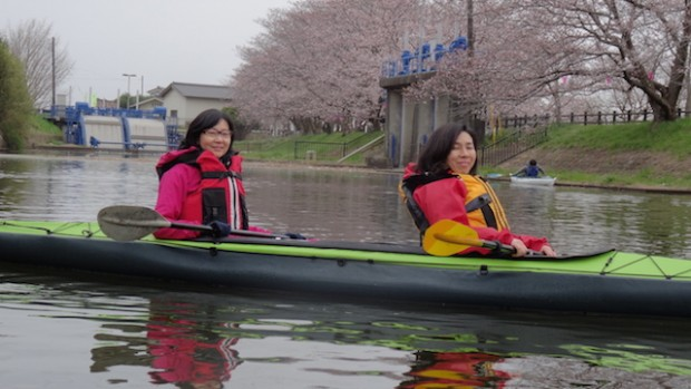 福岡堰さくら公園29