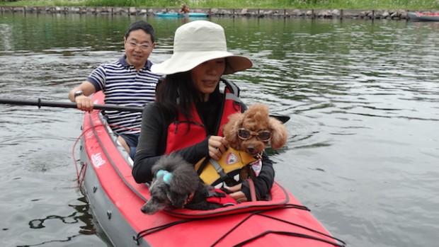 2017.5.7 dog canoe77