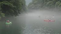 【神秘的な雰囲気で!】奥多摩の白丸湖でワンちゃんと楽しむカヌー!