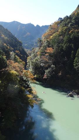 【第6回ワンちゃんカヌー!】白丸湖で紅葉を楽しむワンちゃんとカヌー体験