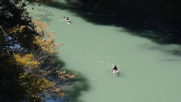 2017.11.12 dog canoe47