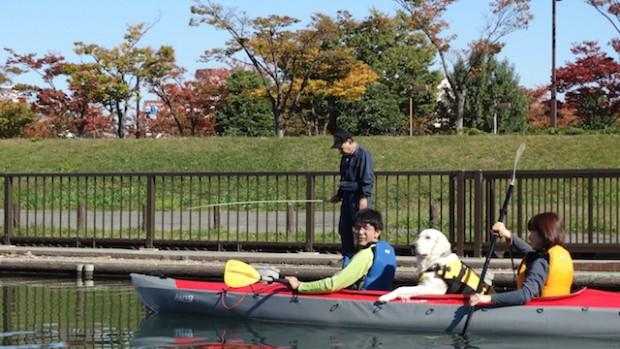 2017.11.3 dog canoe35