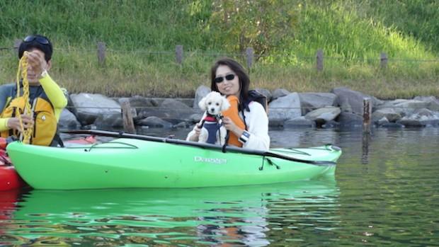 2017.11.3 dog canoe57