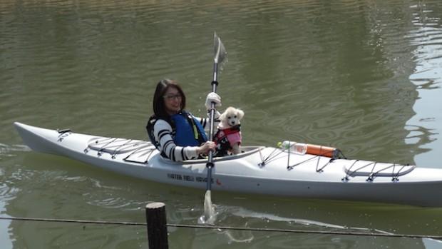 2018.3.11dog canoe20